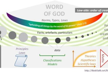 Law-side: order of creation diagram