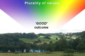 Plurality of values leading to good outcome