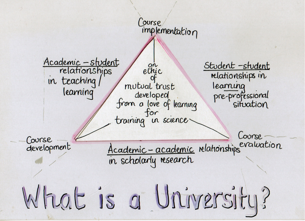 What is a University